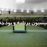 تشریح عملکرد ششماهه وزارت نفت در کمیسیون برنامه مجلس